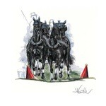 Quadro Print (Driving Horse) by Jan Kunster