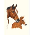 Smarty Print (Mare & Foal) by Jan Kunster