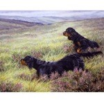 Basic Instinct Print (Gordon Setter)