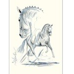 Verona Print (Dressage) by Jan Kunster